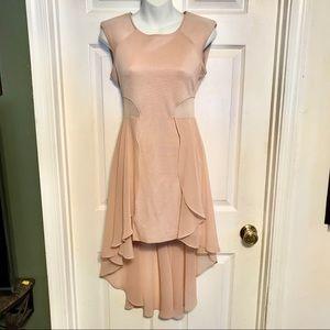 Bebe blush dress.